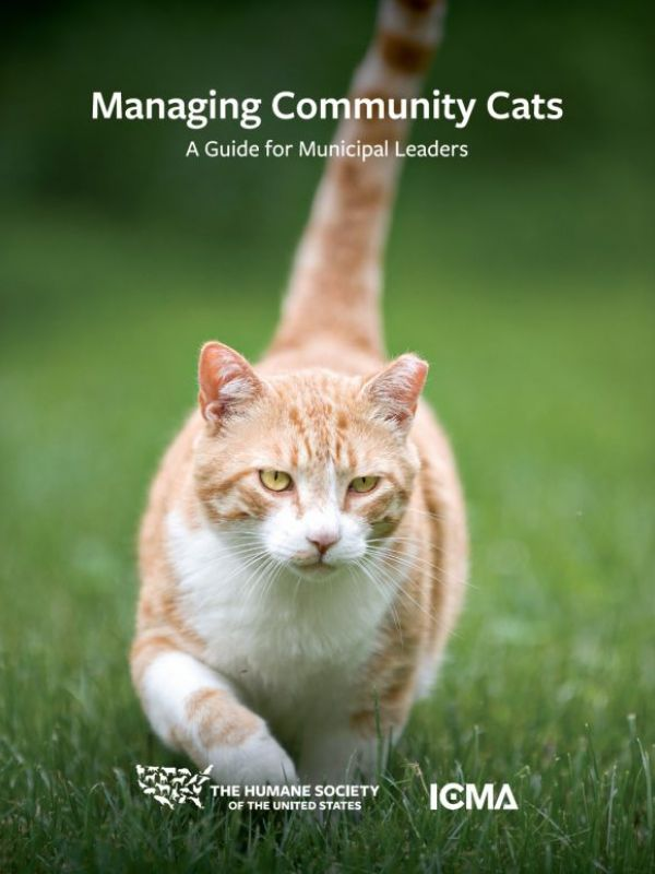Managing Community Cats Cover