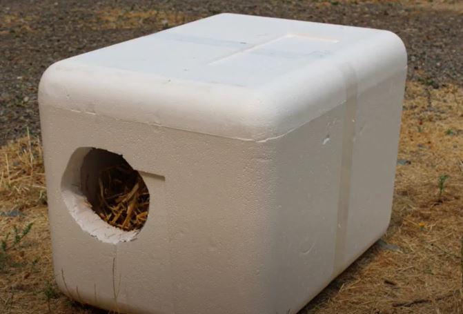 Handmade foam outdoor shelter for feral cats
