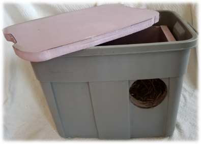 A gray storage bin used as a feral cat shelter outside
