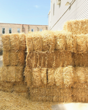 Bails of hay stacked on top of each other